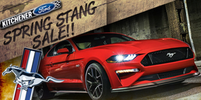 Spring Stang Sale